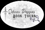 silver dagger button