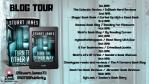 BLOG TOUR (2)